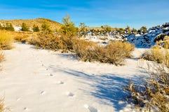 Trilhas na neve Fotos de Stock