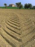 Trilhas na terra Imagem de Stock