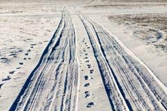 Trilhas nevado simples do pneumático - retrato Fotografia de Stock
