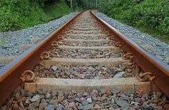 Trilhas Railway flanqueadas pela vegetação litoral foto de stock