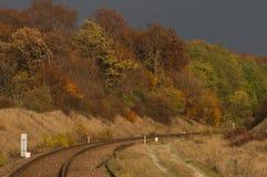 Trilhas railway vazias Imagem de Stock