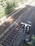 Trilhos do trem Imagens de Stock