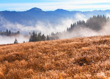 Trillend horizontaal landschap, mistige bergen Stock Foto's