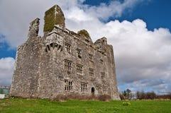 Trillend Iers kasteel ten westen van Ierland Royalty-vrije Stock Foto's