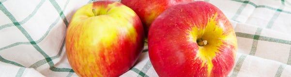 Trillend kleurenstilleven met rijpe rode appelen op de doek Stock Fotografie