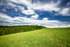 Trillend landschap Stock Afbeelding