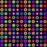 Trillende Kleurrijke Bloemen op Zwarte Achtergrond Stock Afbeelding