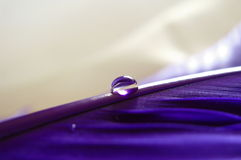 Purpere veer met een waterdaling Royalty-vrije Stock Fotografie