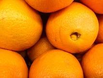Trillende Sinaasappelenachtergrond stock afbeeldingen
