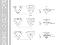 Trillion diamond shape Stock Photography