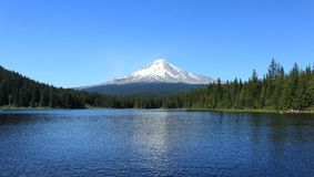 Trillium湖的胡德山 免版税库存图片