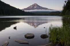 Calm Still Dusk Trillium Lake Mt Hood Oregon Royalty Free Stock Photography