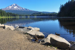 Trillium Lake early morning with Mount Hood, Oregon, USA Stock Photography
