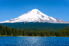 Trillium Lake and Mount Hood Royalty Free Stock Image