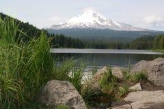 Trillium Lake With Mt Hood Stock Image