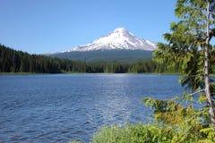 Trillium lake and Mt. Hood, Oregon. Stock Photos