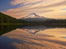 Trillium Lake Oregon Royaltyfria Bilder