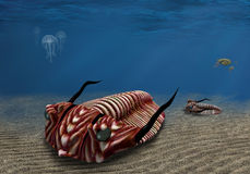 Trilobite. Prehistoric trilobite scavenging on the ocean floor Stock Photography
