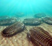 Trilobites som äta as på Seabottomen royaltyfri bild