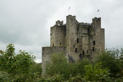 Trim castle, Trim, Ireland. The keep of Trim castle in Trim, Ireland Stock Images