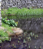 Trim castle wall and moat. Royalty Free Stock Photography