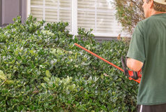 Trim the hedges Stock Images