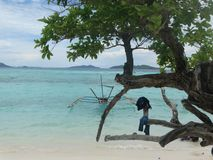 Trimarano alla spiaggia tropicale dell'isola di paradiso, Coron, Filippine immagine stock libera da diritti