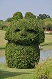 Trimmed bush in garden Stock Image