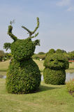 Trimmed bush in garden. Trimmed bush, the decoration in garden stock photo