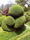 Trimmed plant bear. In ooty botanical garden, tamilnadu, india stock photography