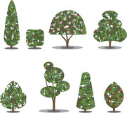 Trimmed tree bush collection Stylized Vectors Royalty Free Stock Images