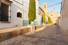 Trimmed trees in narrow Spanish traditional village streets Royalty Free Stock Images