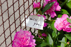 Trimmer avec le petit bouquet des roses et de la lettre d'amour Image stock