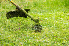 Trimmer head cutting grass to small pieces Royalty Free Stock Photography