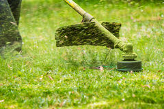 Trimmer head cutting grass to small pieces Royalty Free Stock Photos