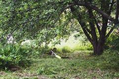 TrimmerRasenmäher liegt im Gras unter dem Baum stockbilder