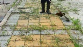 Trimming Grass. Grass cutting service. Close up Trimming Grass. Grass cutting service stock footage