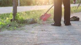 Trimming Grass. Grass cutting service. Close up Trimming Grass. Grass cutting service stock video footage
