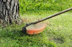 Trimming the grass near a tree trunk. Focus on the grass trimmer Stock Photography