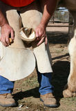 Trimming a horse hoof stock images