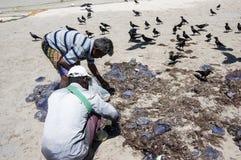 TRINCOMALEE SRI LANKA - AUGUSTI 30, 2015: Fiskare på den Uppuveli stranden i Sri Lanka royaltyfria bilder
