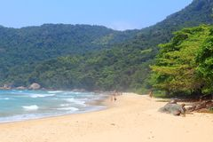 Trindade beach, Brazil royalty free stock images