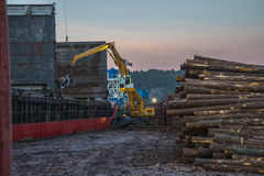 Trine uploads timber. Trine is moored on the quay at port of Halden, Norway and upload timber royalty free stock image