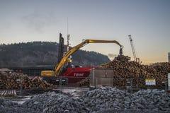 Trine uploads timber Stock Image