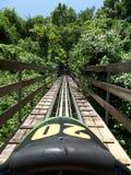 Trineo de la selva tropical en la montaña mística Jamaica fotos de archivo libres de regalías