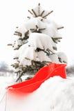 Trineo rojo Imagenes de archivo