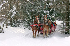 Trineo traído por caballo Imagen de archivo libre de regalías