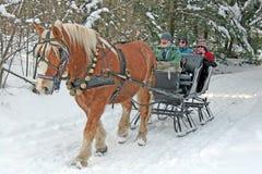 Trineo traído por caballo Fotos de archivo libres de regalías
