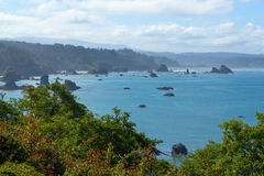 Trinidad bay, California, USA Royalty Free Stock Images
