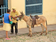 Trinidad, Cuba -Genre sketch with a donkey. Stock Photography